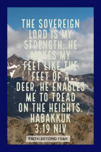 Habakkuk 3:19, Amy Merritt, Faith Beyond Fear, faithbeyondfear.com